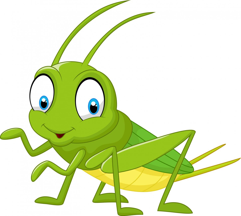 12_Grasshopper_268837928