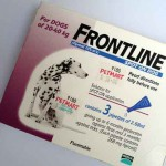 Frontline dogs 20-40lb