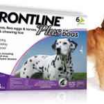 Frontline plus anti flea