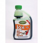 Interpet Koi anti fungus