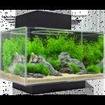 Fluval Edge 23 L aquarium